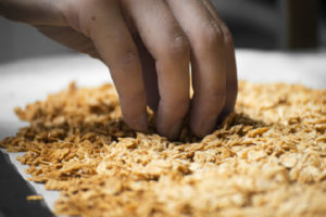 granola avoine, céréales petit déjeuner