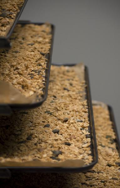 Artisan granola bio la main dans le bol, granola bio petit déjeuner